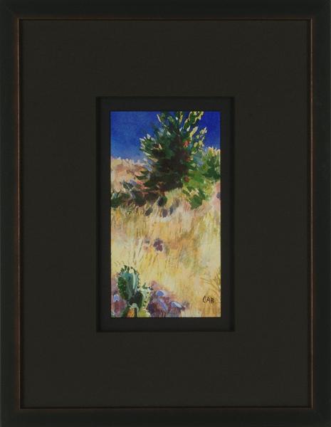 Desert Landscape, New Mexico (B), framed