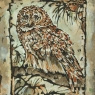Spotted Owl with Orange and Black, unframed