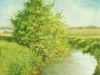 August Light, unframed_dg
