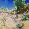 Desert Landscape, New Mexico (C), unframed