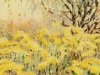 Eagan's Field