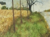 Second House on the Left