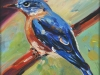 Bluebird, unframed