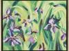 Iris, framed