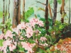 Mountain Laurel, unframed