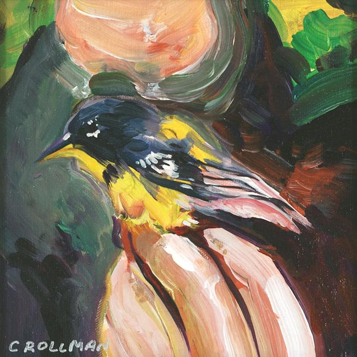 Tremont Bird Banding, unframed