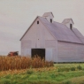 CORN CRIB WITH CORN - CENTRAL ILLINOIS