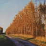 TREE LINE OF POPLARS