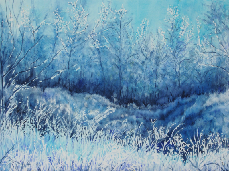 hoarfrost-morning-field-and-forest