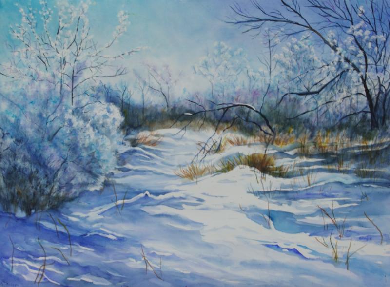 hoarfrost-morning-winter-woods