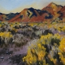 """Sage and Rabbitbrush"""