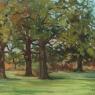Oak Savannah, Skare Park