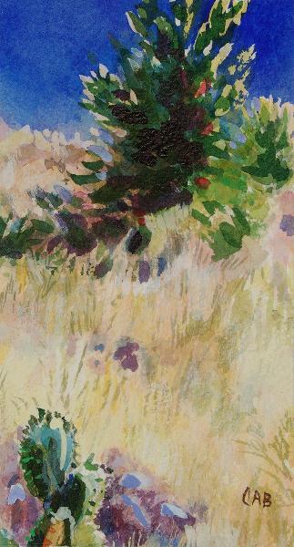 Desert Landscape, New Mexico (B), unframed