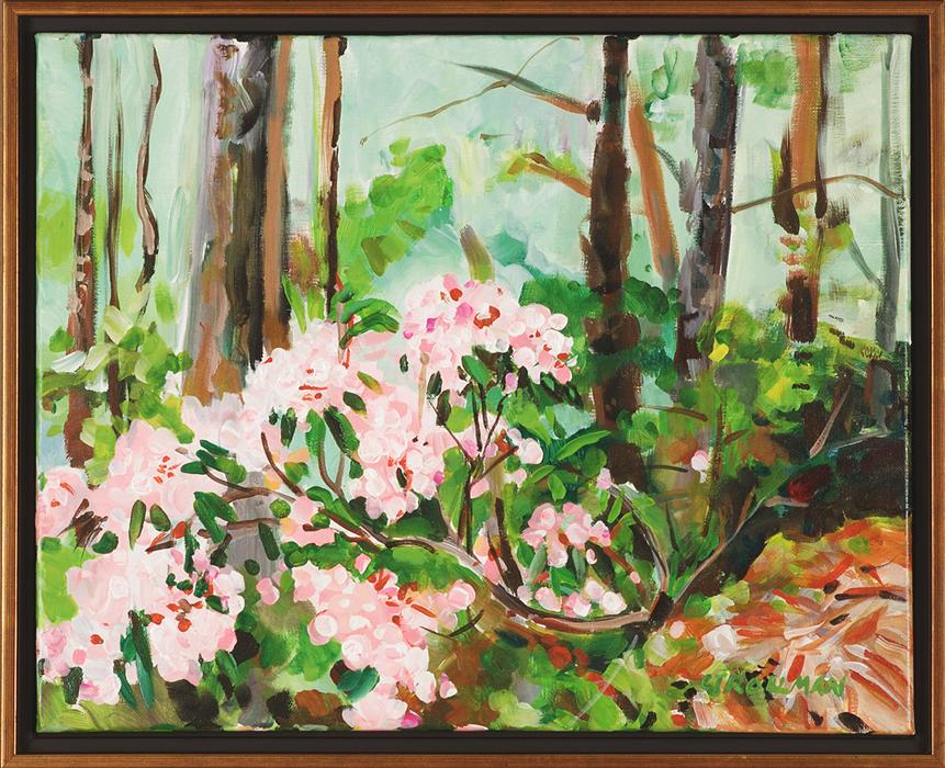 Mountain Laurel, framed