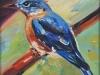 Bluebird, unframed
