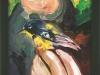 Tremont Bird Banding, framed