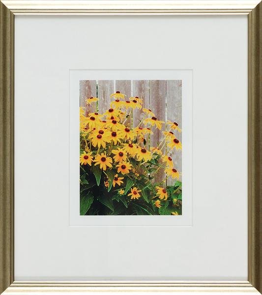 dg_glimpse-framed