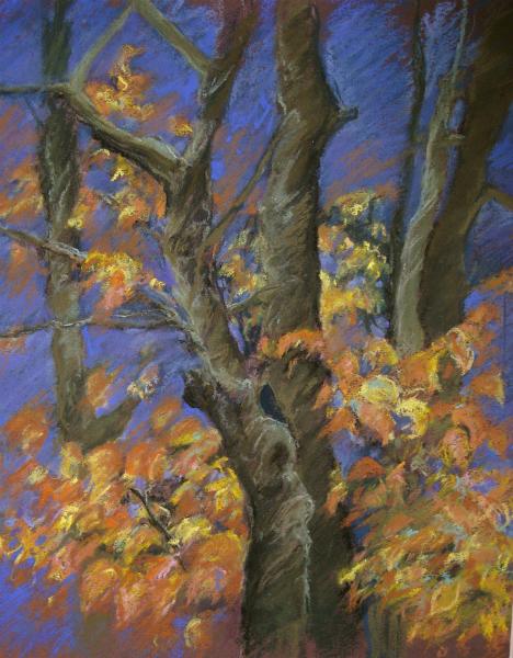 """""""Autumn Study"""""""