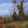 Early Fall Vista