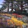 """""""Monterey Garden"""""""