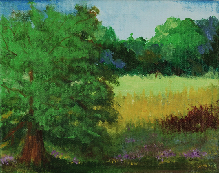 large-oak-tree-with-bright-field-beyond
