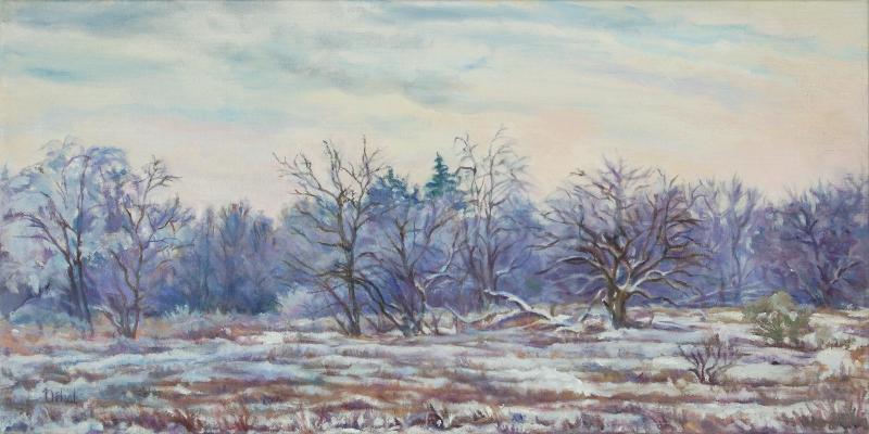 Winter - Skare Park
