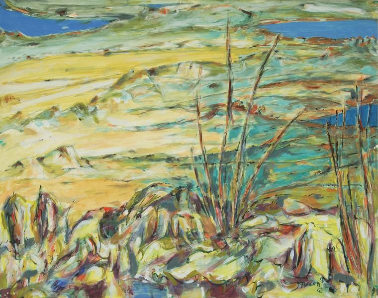 """Arid Landscape"""