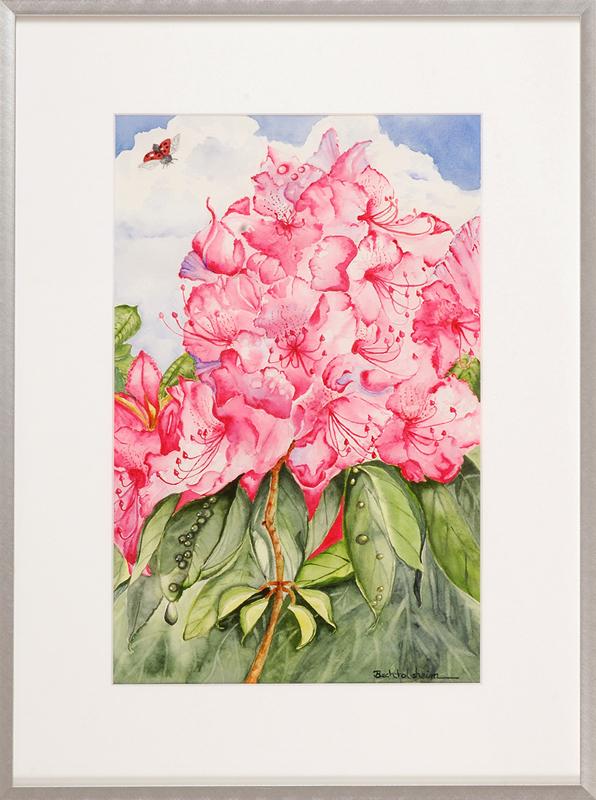 German Rhododendron-framed